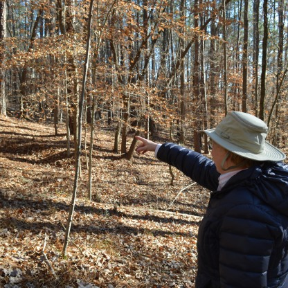 Dr. Jean Spooner, chairwoman of the Umstead Coalition, points to the next yellow dot marker.