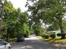 The neighborhood on Prince Street.